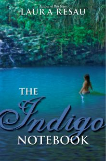 The Indigo Notebook - Laura Resau<br/>