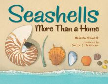 Seashells: Not Just for Shelter - Melissa  Stewart<br/>